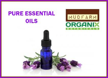 lavender-essential-oil-300x200